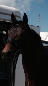 Mar 2014 Classy Sinclair won first place in fourth level class with 698.